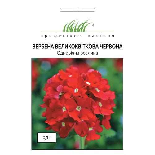Вербена крупноцветковая КРАСНАЯ (Verbena hybrida) Професійне насіння 0,1 г