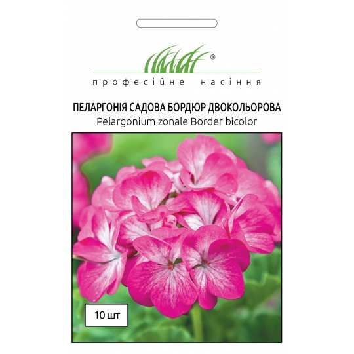 Вербена крупноцветковая (Verbena hybrida) розовая Професійне насіння 0,1 г