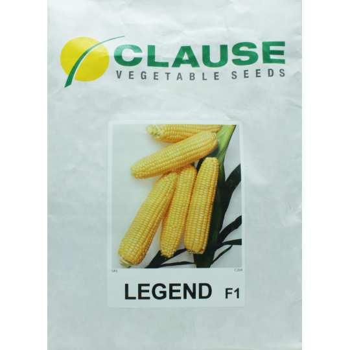 Кукуруза ЛЕЖЕНД F1 Clause | LEJEND F1Clause