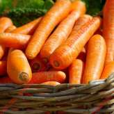 Морковь МАТЧ F1 | MATCH Clause
