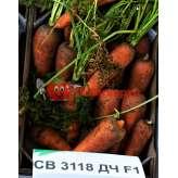 Морковь СВ 3118 F1 Seminis (1.6-1.8)
