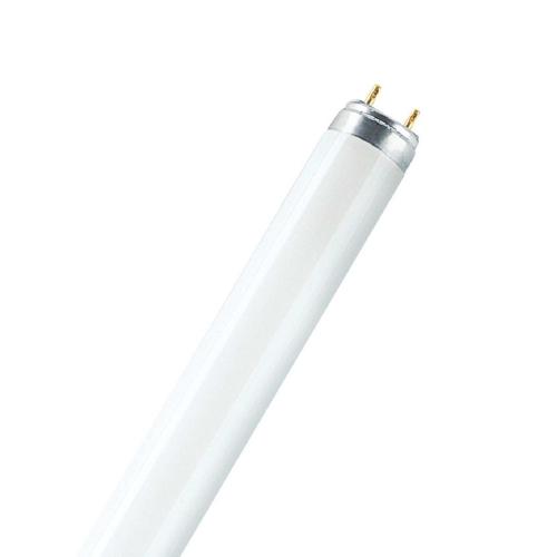 Лампа люминесцентная линейная Т8 36 Вт/77 G13 Fluora Osram