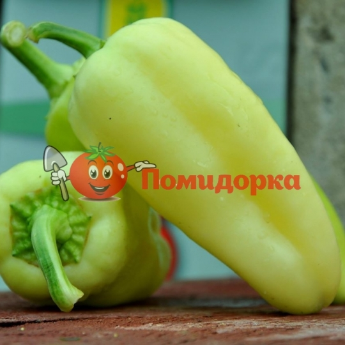 Перець ЕЛМАС F1 | ELMAZ F1 Yuksel