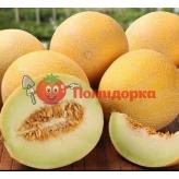 Дыня АМАЛИК (АРМОНИЯ) F1 Професійне насіння 8 шт.