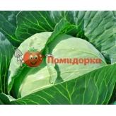 Капуста КАМЕННАЯ ГОЛОВА Професійне насіння 1 г.