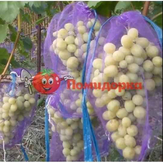 Сетка для винограда на 2кг (20х33см.)