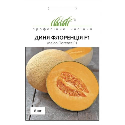 Диня Професійне насіння ФЛОРЕНЦИЯ 8 шт