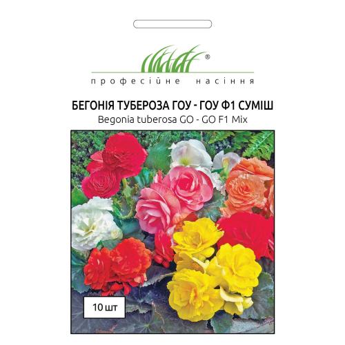Бегония Тубероза Гоу-Гоу F1 | Begonia tuberosa Gо-Gо F1