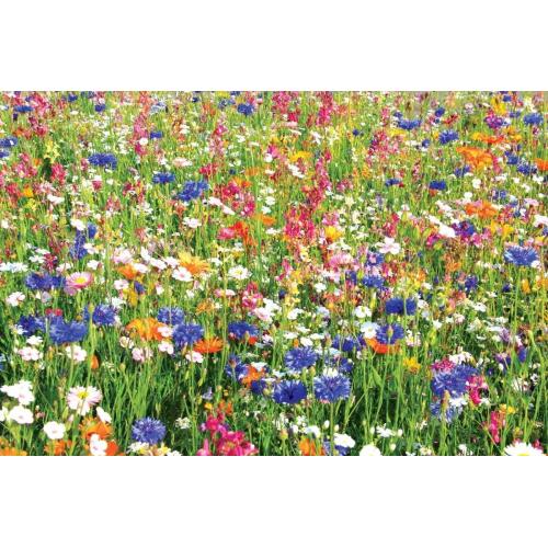 ДУШИСТЫЙ САД смесь семян цветов Професійне насіння 30 г