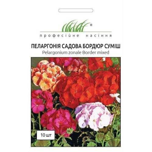 Пеларгония садовая Бордюр | Pelargonium hortorum Border