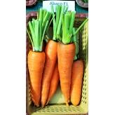 Морковь АБАКО F1 1.6-1.8 | ABAKO Seminis
