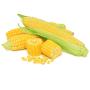 Кукуруза ГСС 5649 F1 | GSS 5649 F1 Syngenta (Фасовка - 100 000 семян)