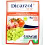 Инсектицид ДИКАРЗОЛ | Dicarzol 50 SP (Фасовка - 250 г)