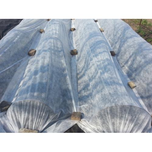 Агроволокно Greentex р-23 белое 6.35 м x 100 м
